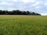 Land Adjacent to Bury Hill Land