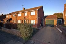 semi detached property to rent in Chaucer Close STUDENT...