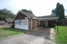 Detached Bungalow in Green Dell STUDENT LET...
