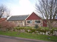 Detached Bungalow in Holy Island...