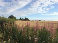Land in Netherton Lane...