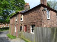 North Street semi detached property to rent