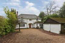 4 bed Detached property to rent in Crawley Ridge, Camberley...