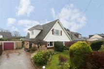 Red Lion Road Detached house to rent