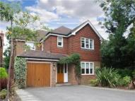 Detached house to rent in Charter Place...