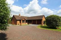 3 bedroom Detached Bungalow in Saddler Avenue, Stone