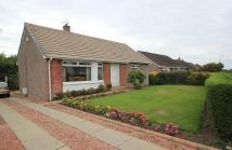 Detached Bungalow to rent in BURNSIDE AVENUE, Glasgow...