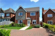 Detached property to rent in Chartridge Lane, Chesham...