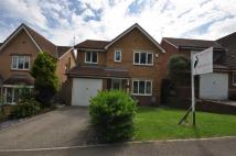 Detached property for sale in Barton Park, Ryhope...