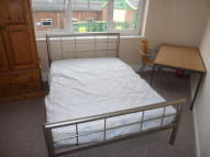 8 bed Terraced home to rent in Slack Lane, Derby
