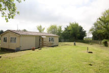 Detached Bungalow in Pannells Ash, Ashen, CO10