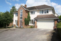Detached home in Hill Crescent, Haverhill...