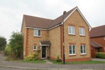 Detached property for sale in Raine Avenue, Haverhill...