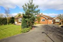 Detached Bungalow in Grantham Road, Bottesford