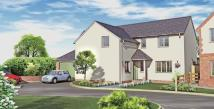 new house for sale in Banc Y Chwarel, Bodfari...