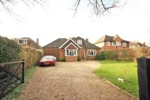 Detached Bungalow for sale in Frog Grove Lane...