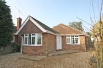 Detached Bungalow in Saffron Platt, Guildford...