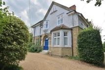 Flat to rent in Lower Edgeborough Road...