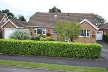 Detached Bungalow for sale in The Fairway, Burbage