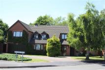 Detached house in Brascote Road, Hinckley