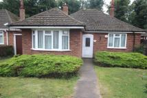 2 bed Detached Bungalow in Welbeck Avenue, Burbage