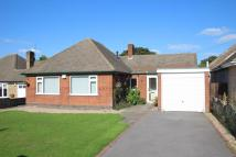 Detached Bungalow in Hillrise, Burbage