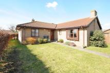Detached Bungalow in SWALLOWFIELDS...