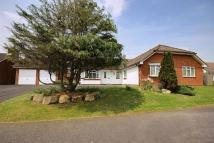 Detached Bungalow in ADJOINING SOUTH DOWNS...
