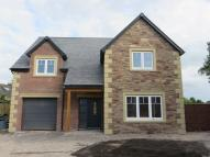 4 bed new house for sale in Wellgate Close, Thursby