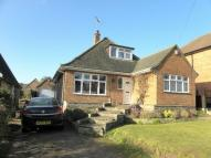 Detached Bungalow for sale in Beech Avenue, Sandiacre