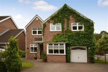 Detached property for sale in Low Eggborough Road...
