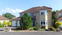 5 bedroom Detached property in Portal Close, Chippenham