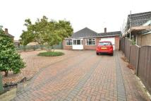 Detached Bungalow in Maylands Avenue, Breaston