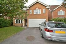 Detached home in Ferndene Drive...