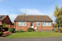 Detached Bungalow for sale in Clifford Close