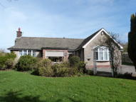 2 bedroom Detached Bungalow for sale in Green Acres, Long Lane...