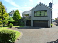 Detached Bungalow in Hill Top...