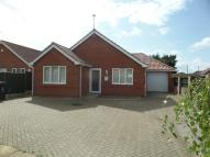 Detached Bungalow to rent in Old Thatche Close...