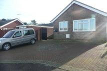 Detached Bungalow to rent in Breydon Way...