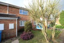 Flat to rent in Darwin Court, Perton...