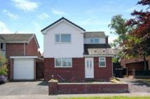 Detached property to rent in Birkdale Road...