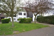 1 bed Apartment for sale in Colchester Road...