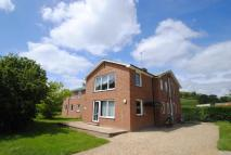 House Share in Field House, Hambledon...