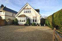 Detached property for sale in Blagrave Lane...