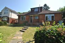4 bedroom Bungalow to rent in Hemdean Road, Caversham...
