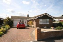 2 bed Detached Bungalow for sale in Gordon Brae, MANSFIELD...