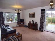 Detached Bungalow to rent in Park Hall Road...