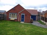 3 bed Detached Bungalow in Rushpool Close...