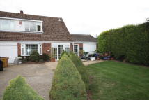 3 bedroom semi detached house to rent in SYCAMORE CLOSE, Fareham...