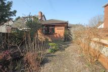 2 bed Detached Bungalow in Locks Road, SO31